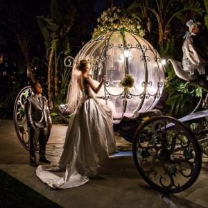 Cinderella\'s carriage
