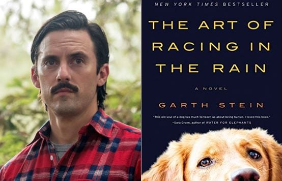 The Art Of Racing In The Rain: Milo Ventimiglia's Potential New Movie Role Will Probably